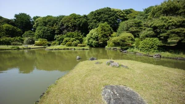 植物園の日本庭園。よく見ると亀が岩の上に。。。
