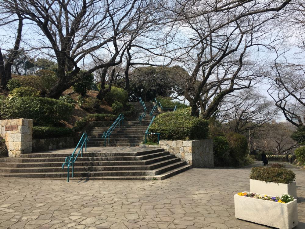 掃部山公園の階段