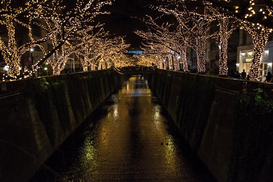 目黒川のライトアップ