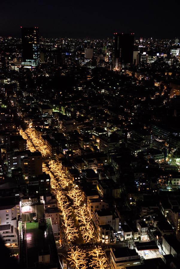 目黒川ライトアップの全体像
