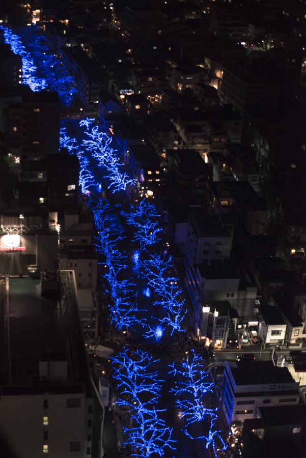 目黒川の青のライトアップ