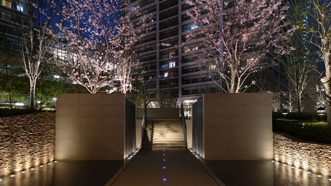 正面入口と桜