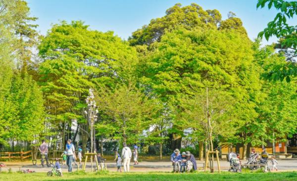 三宿の森緑地公園