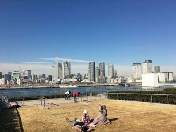 豊洲市場の屋上緑化エリア