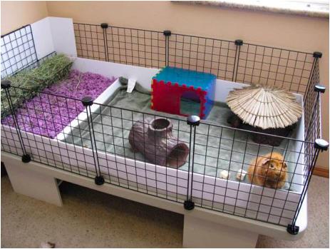 ペットの小屋