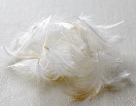 枕の素材:羽