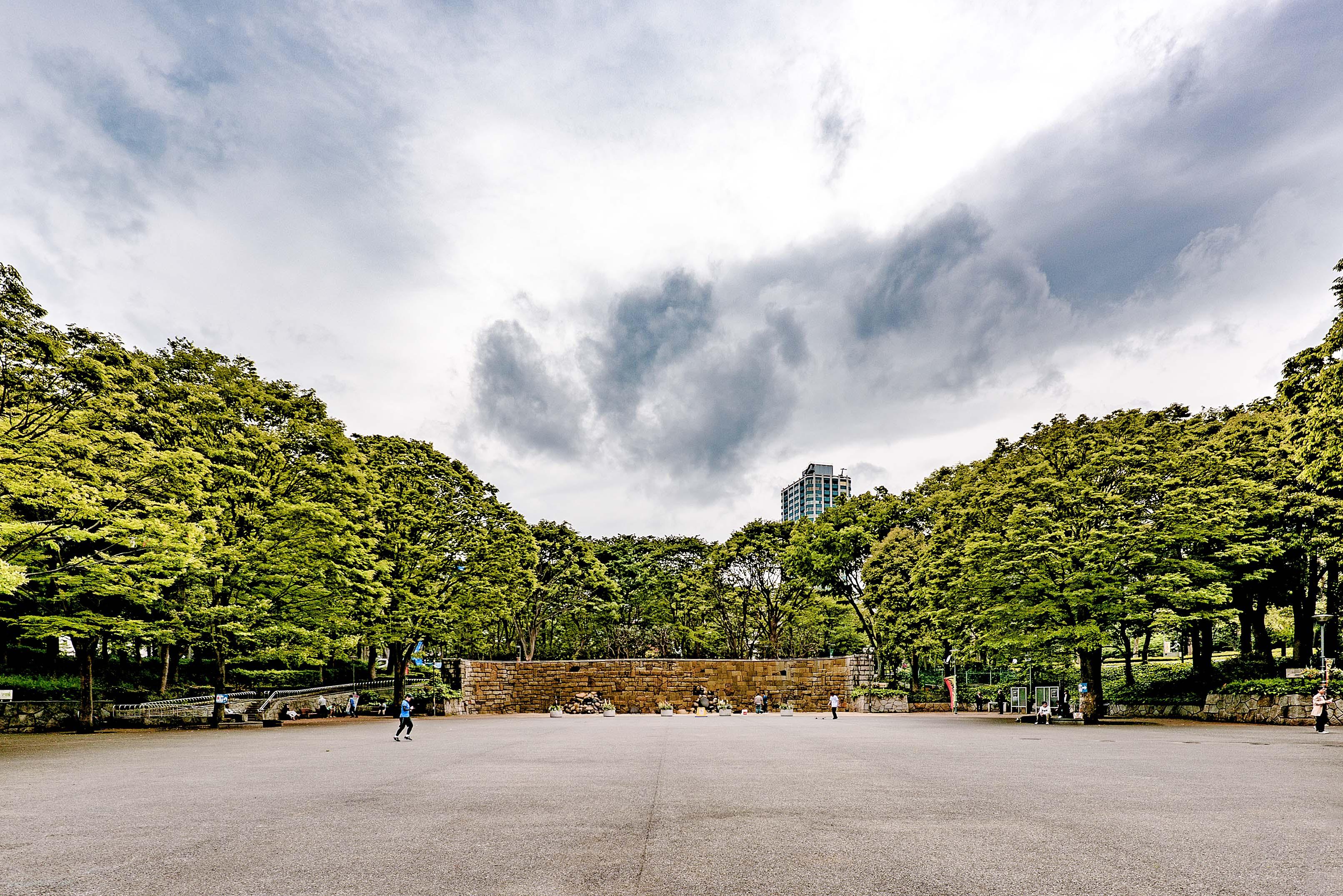 アトラスタワー西新宿_中央公園