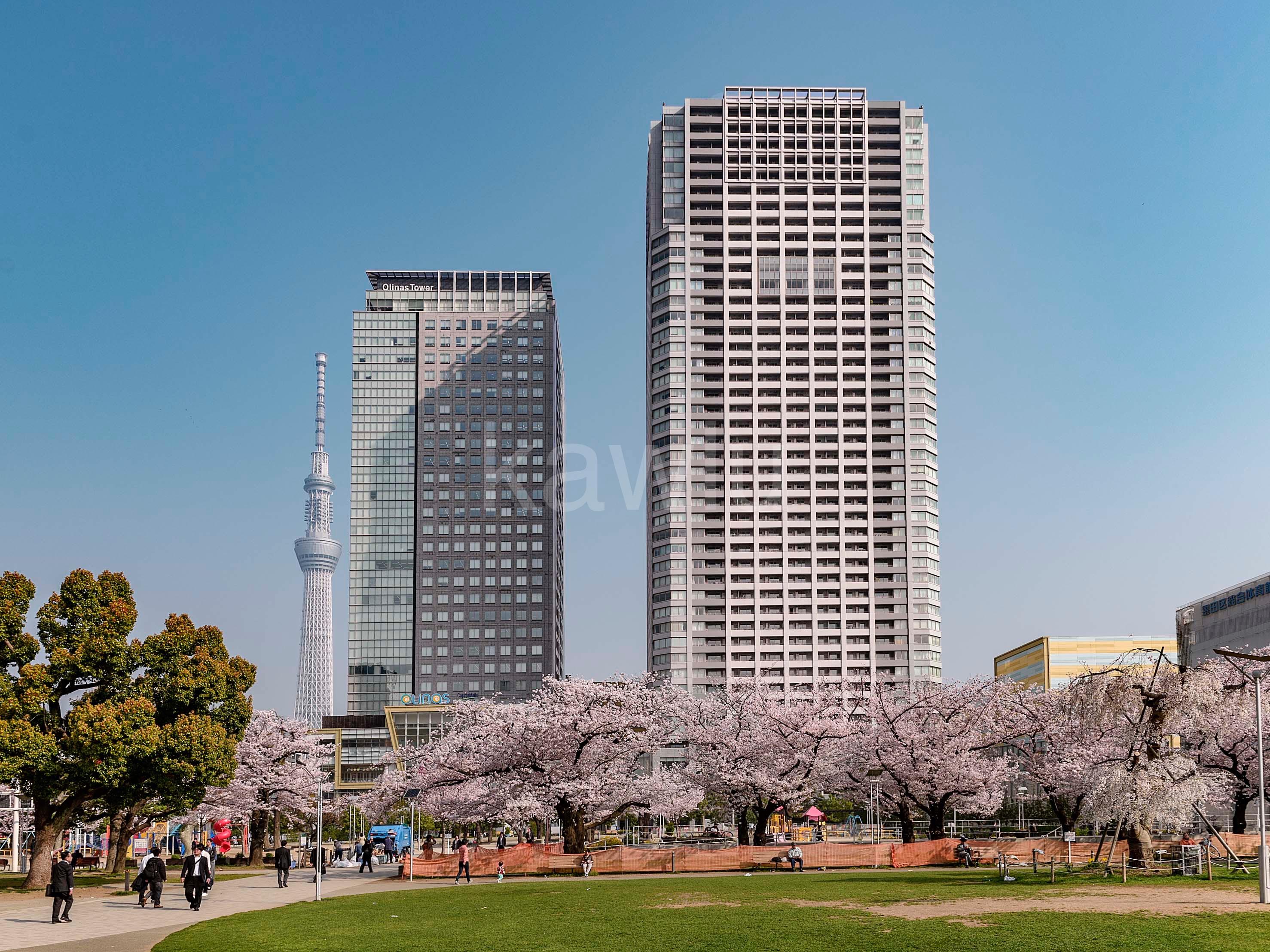 ブリリアタワー東京は錦糸町から徒歩5分の駅近タワーマンション!