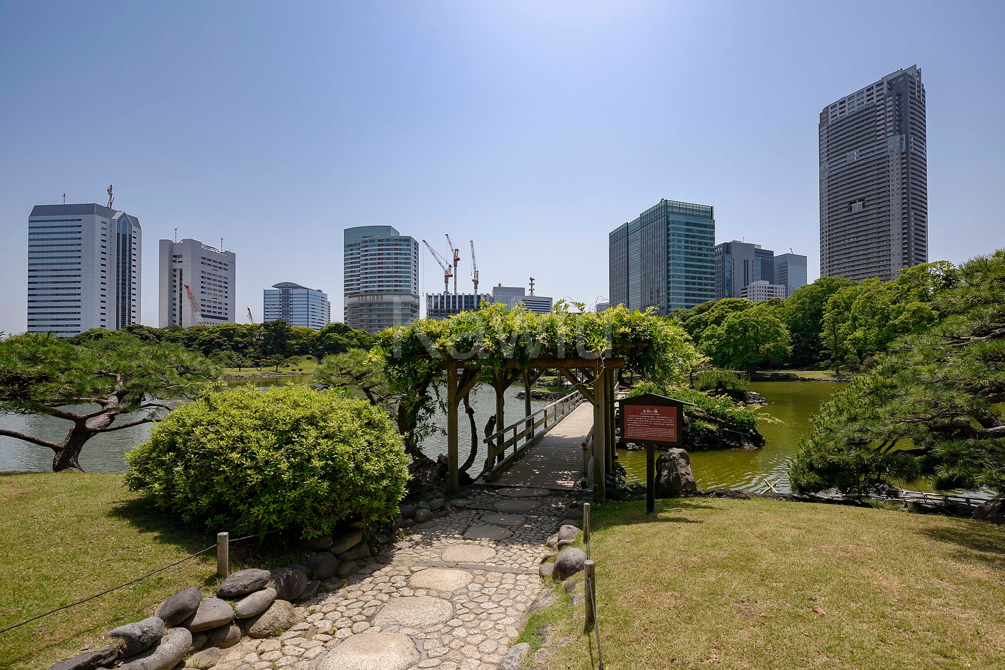 東京ツインパークス_浜離宮恩賜庭園