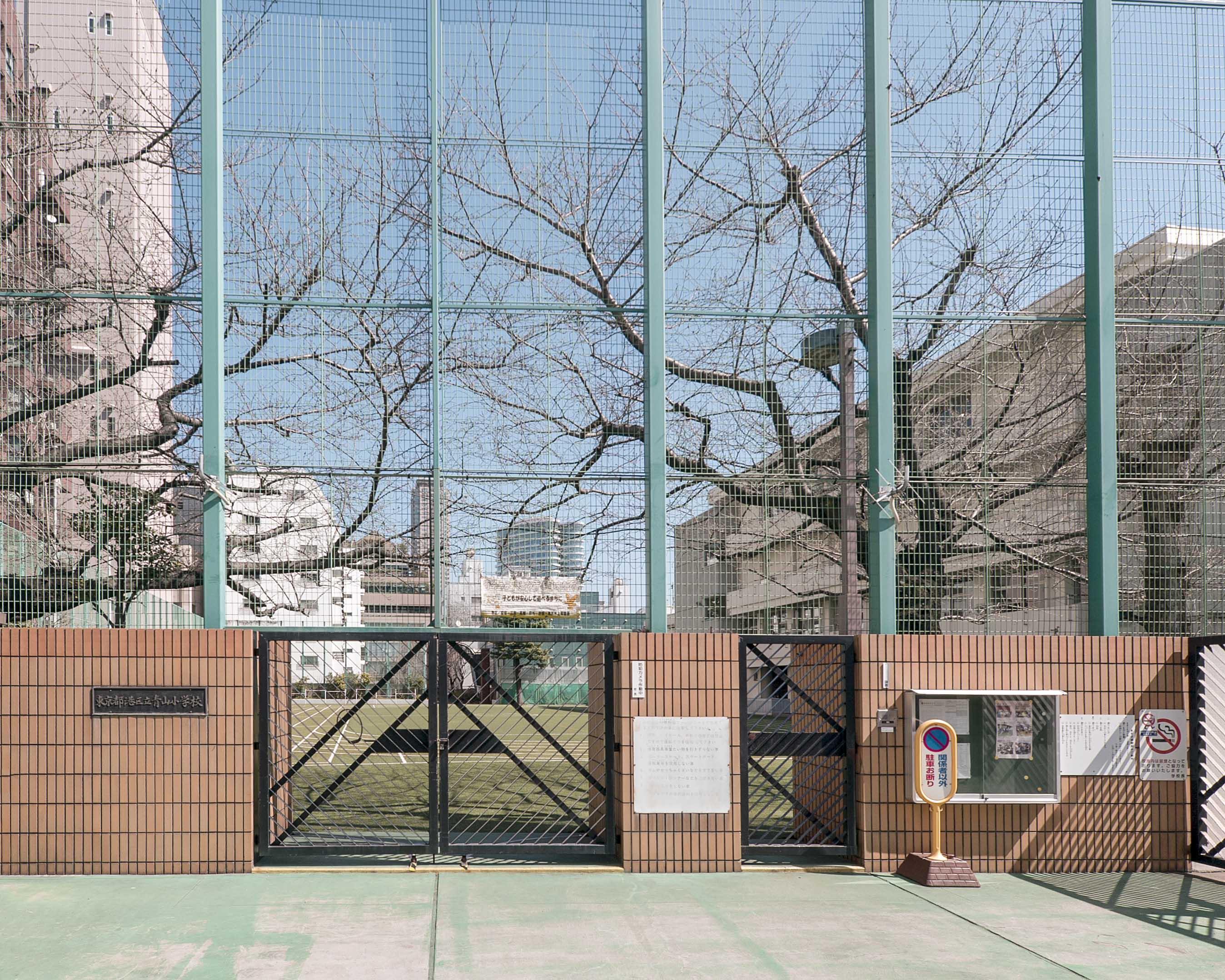 青山ザ・タワー_青山小学校