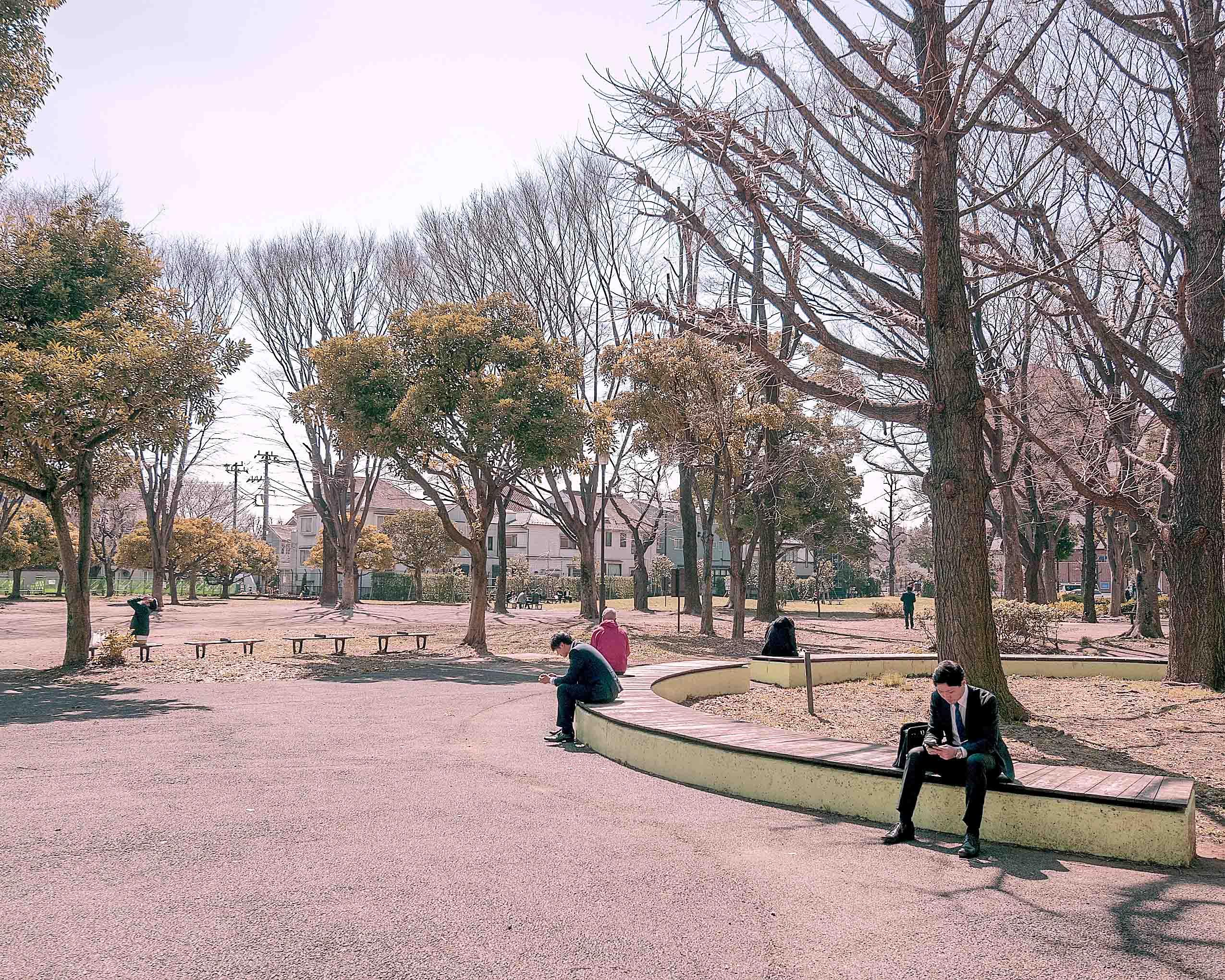 青山ザ・タワー_青山公園