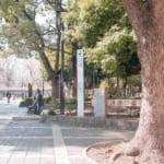 パークハウス清澄白河タワー_清澄公園