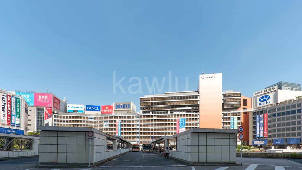 セントラルレジデンス新宿シティタワー_新宿西口デパート