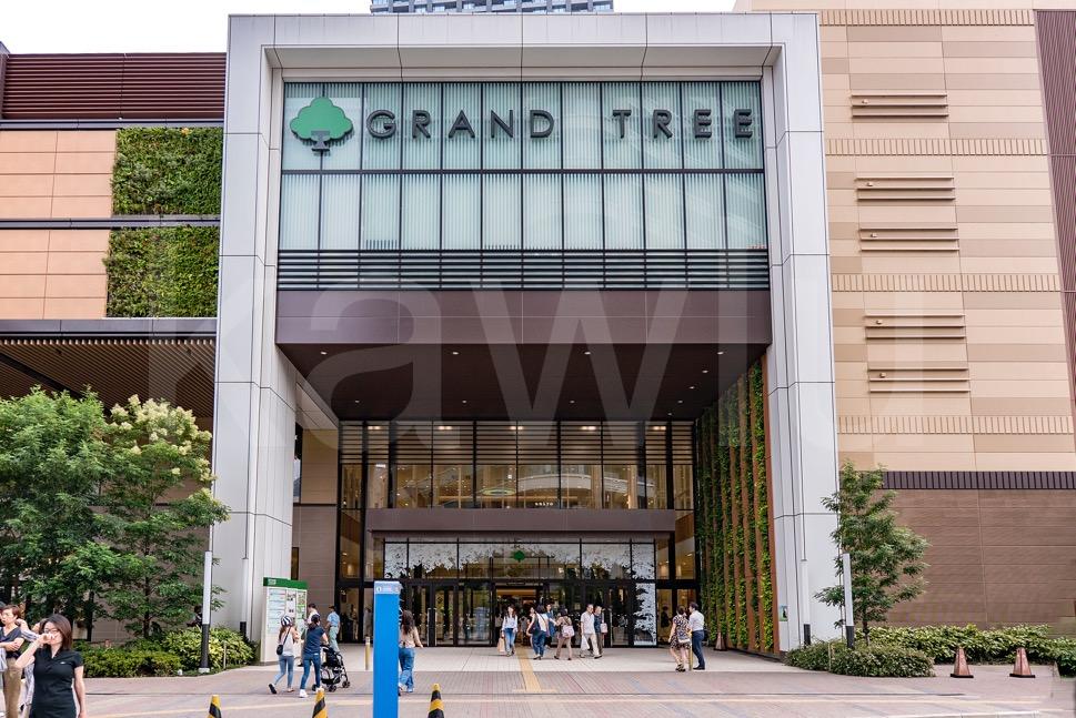 【必見】人気急上昇中の街「武蔵小杉」その人気の秘訣とマンションランキングを発表!