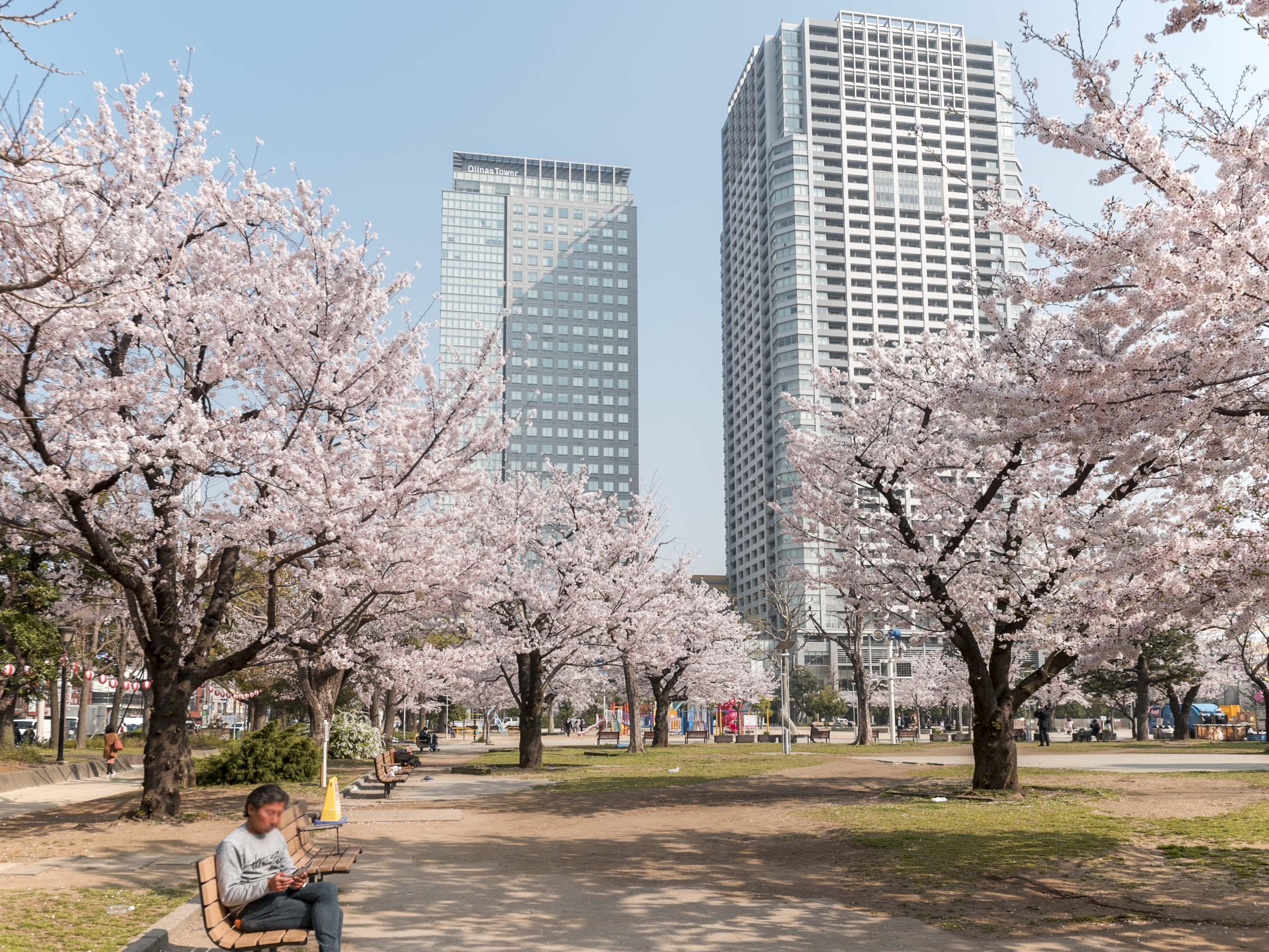 プラウド錦糸公園