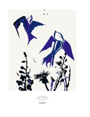 STILLEBEN ポスター 50X70 No.29